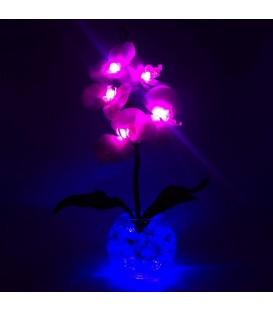 """Ночник """"Светодиодные цветы"""" LED Provocation, 5 малиновых орхидей с синей подсветкой — Купить по низкой цене в интернет-магазине"""
