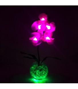 """Ночник """"Светодиодные цветы"""" LED Provocation, 5 малиновых орхидей с зелёной подсветкой — Купить по низкой цене в"""