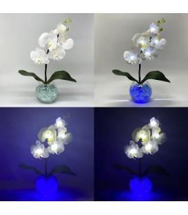 """Ночник """"Светодиодные цветы"""" LED Provocation, 5 белых орхидей с синей подсветкой — Купить по низкой цене в интернет-магазине"""