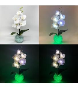 """Ночник """"Светодиодные цветы"""" LED Provocation, 5 белых орхидей с зелёной подсветкой — Купить по низкой цене в интернет-магазине"""